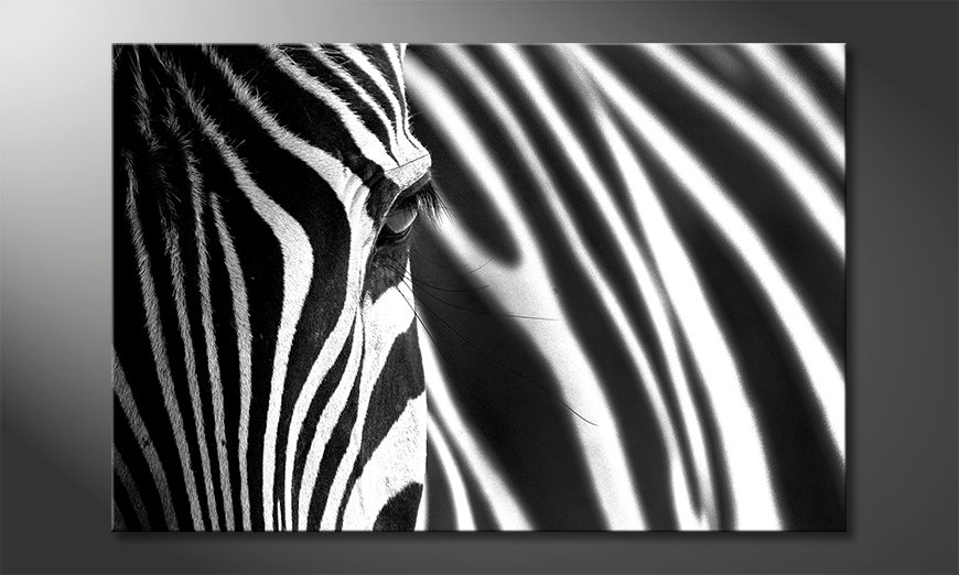 Animal Stripes quadro