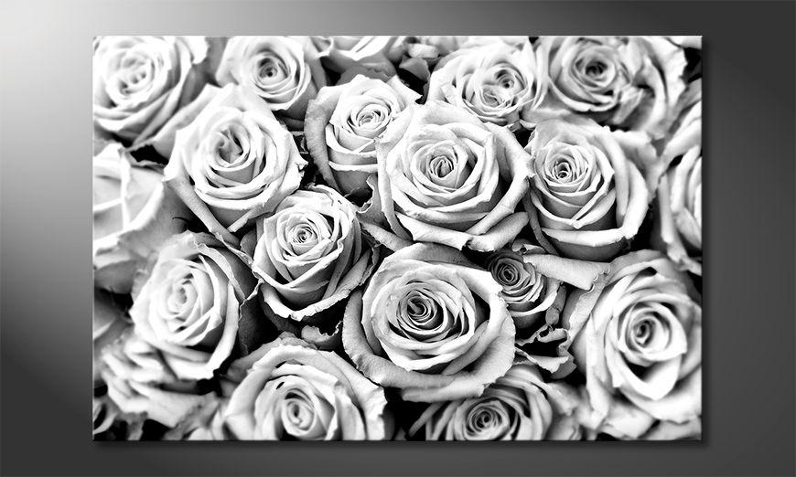 Arredamento moderno Creamy Roses