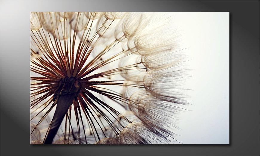 Big Dandelion tela