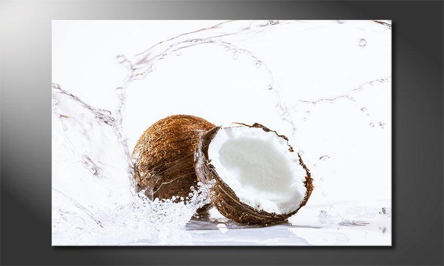 Coconut quadro
