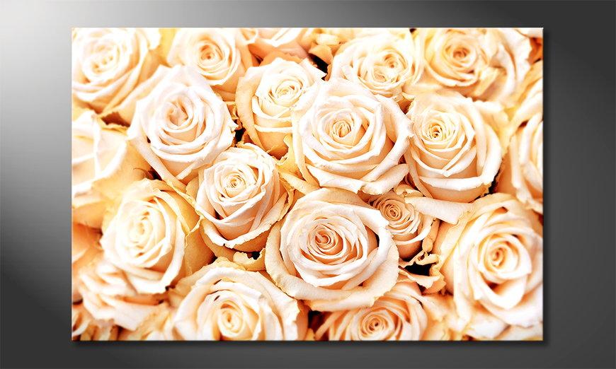 Creamy Roses tela