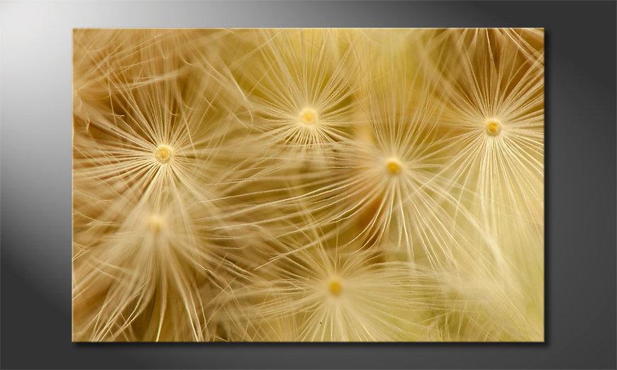 Dandelion Closeup tela