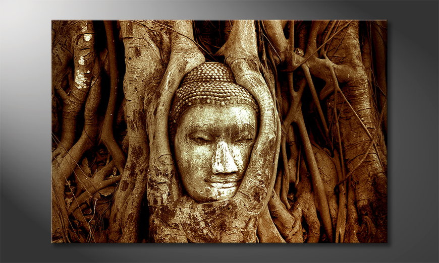 Deep Rooted tela