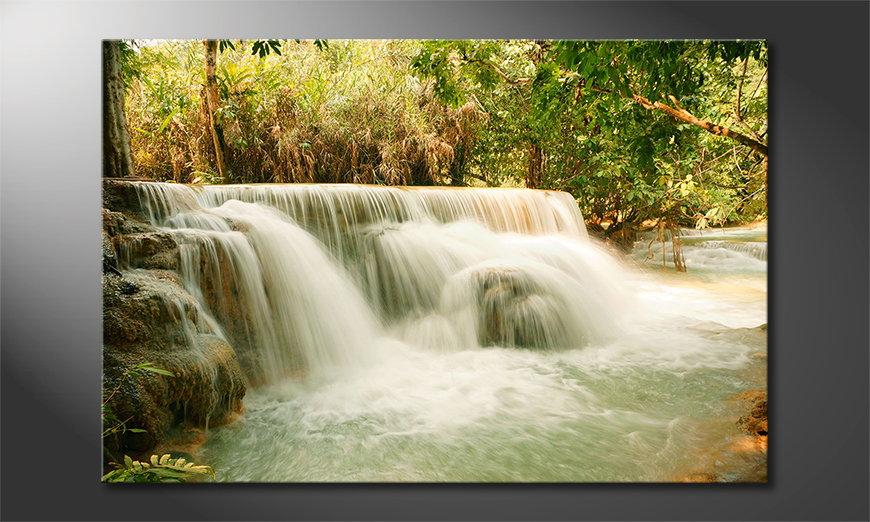 Jungle Waterfall tela