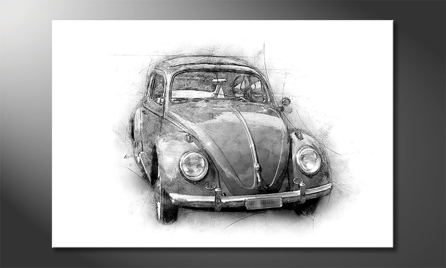 La bella pittura Beetle