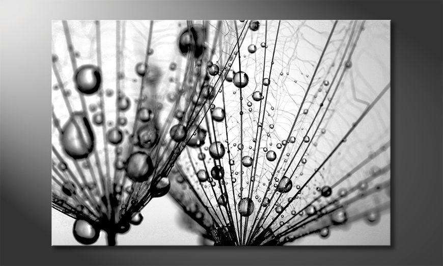 La bella pittura Dandelion Seed
