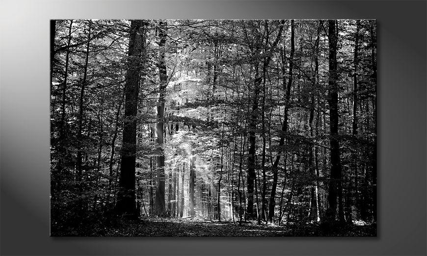 La bella pittura Into The Forest
