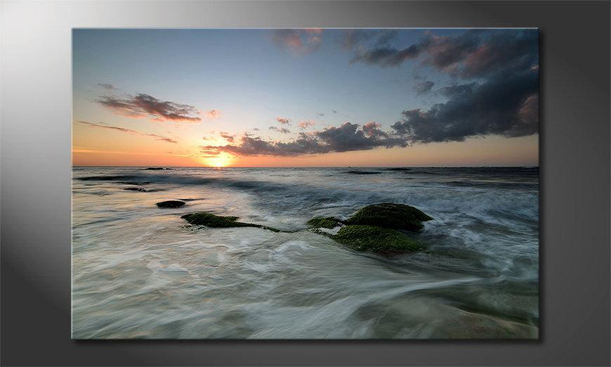 Ocean Sunset quadro