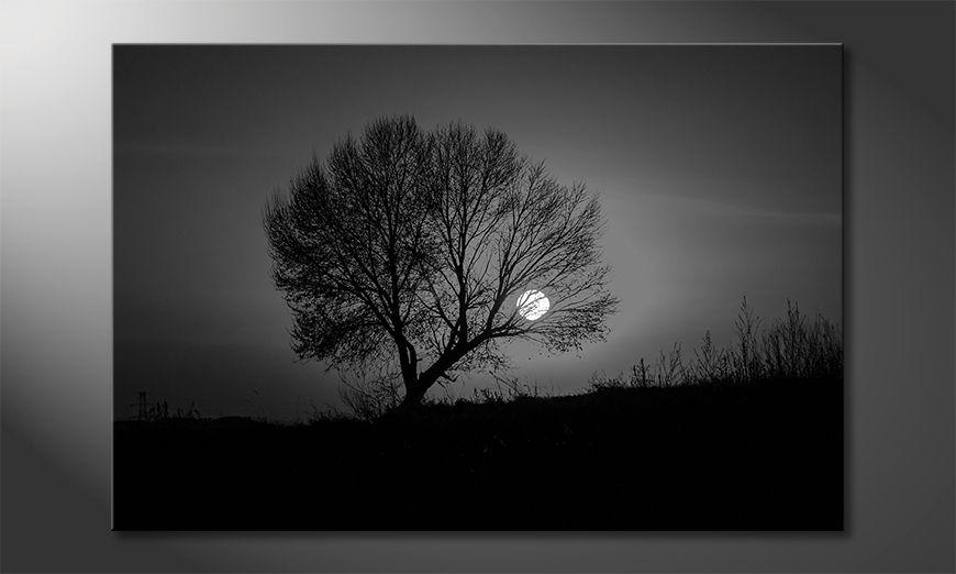 Quadro moderno Sundown