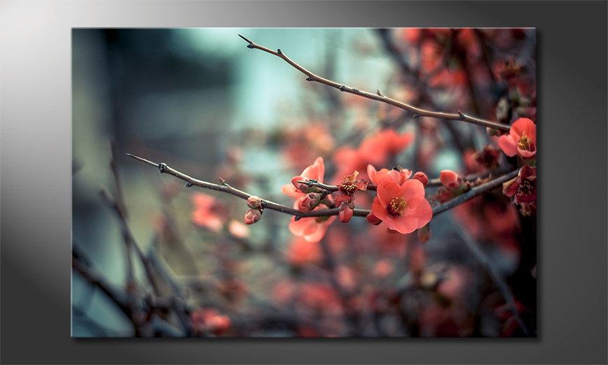 Red Blossoms quadro