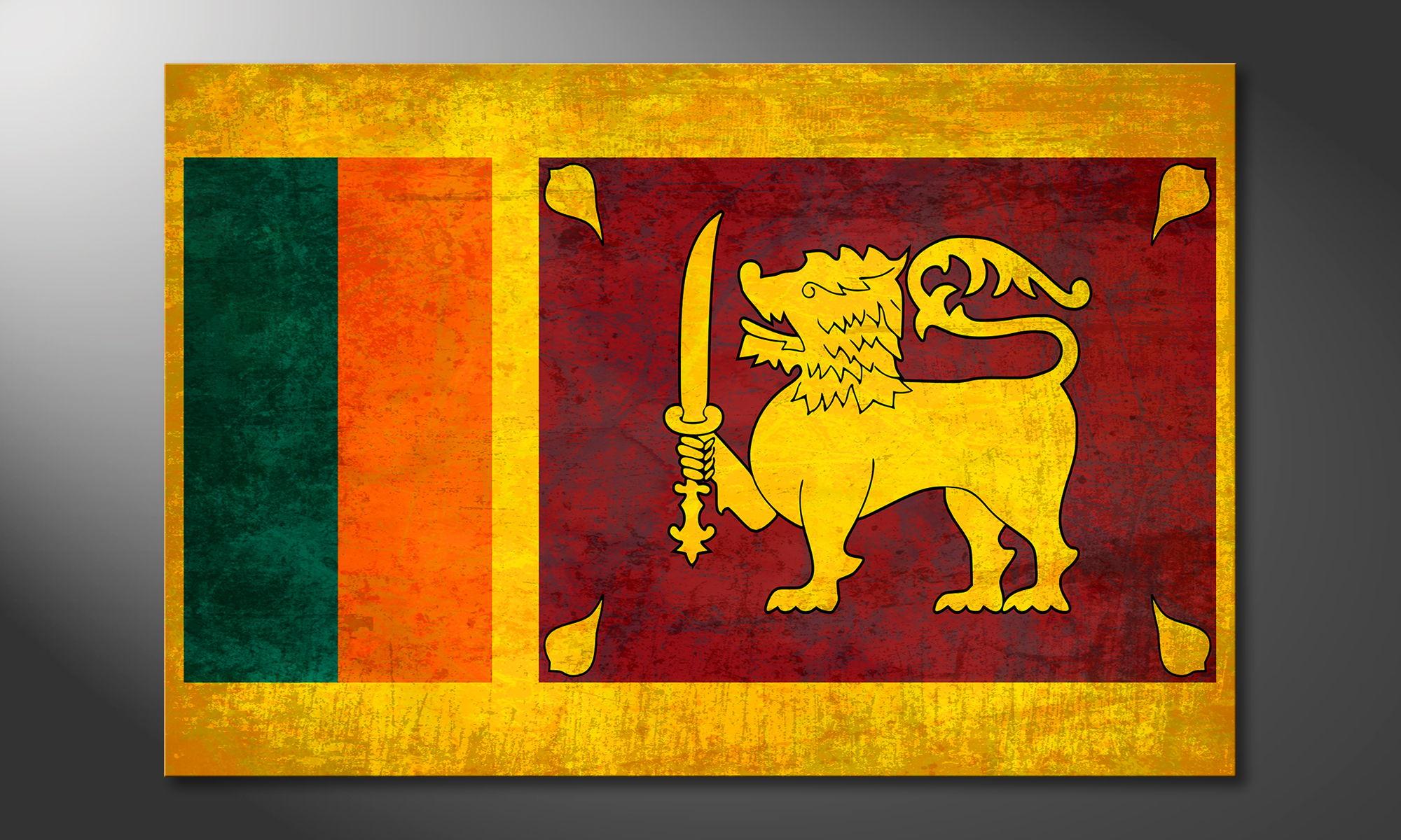 Sri lanka quadro moderni