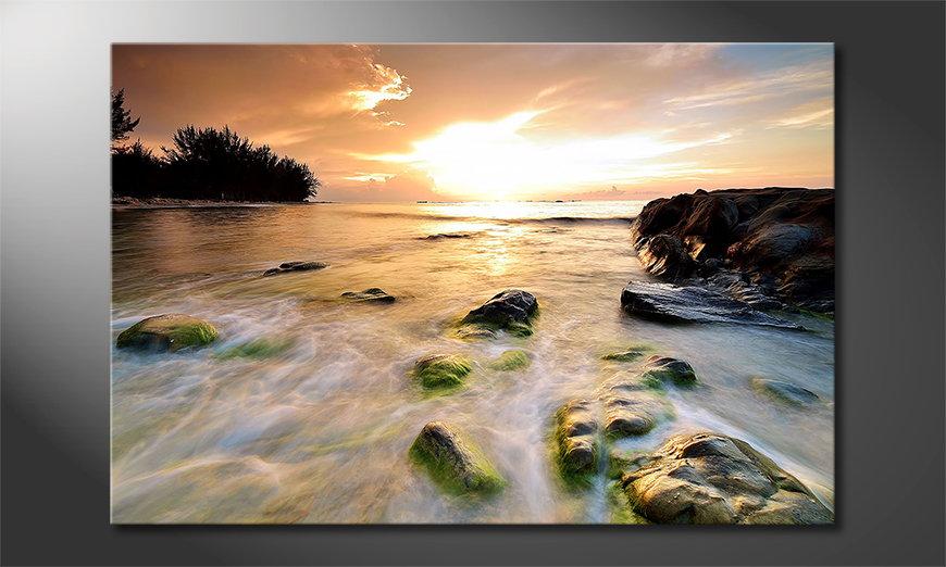 Stoned Sunset quadro