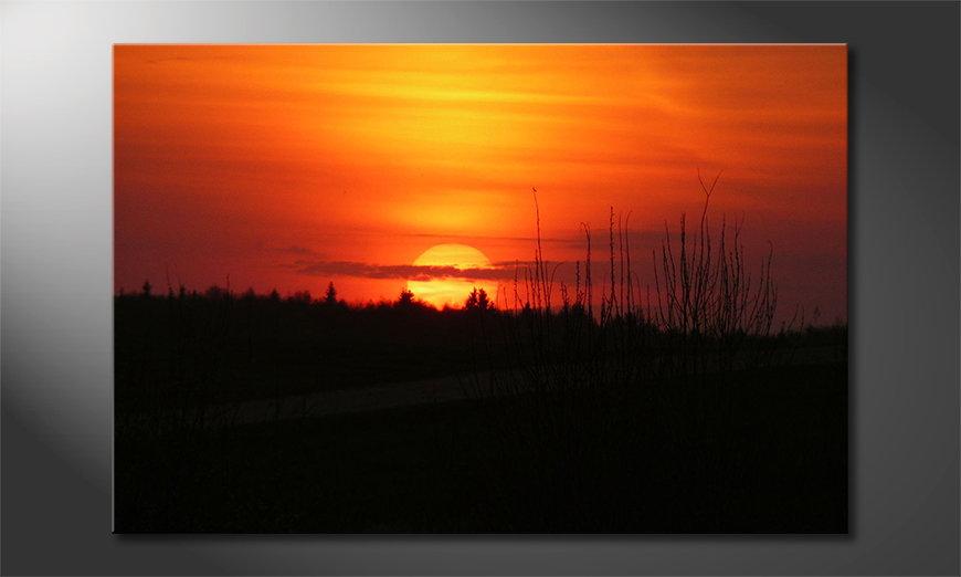 Sunset Sky quadro