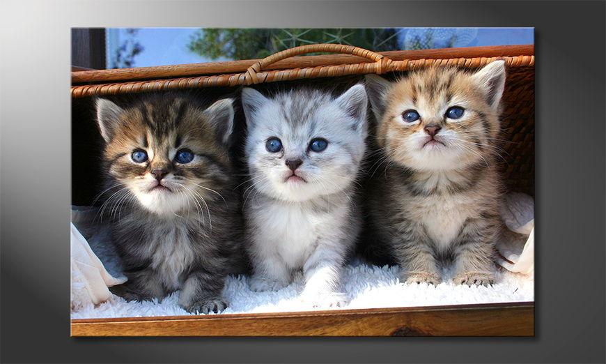 Three little friends tela