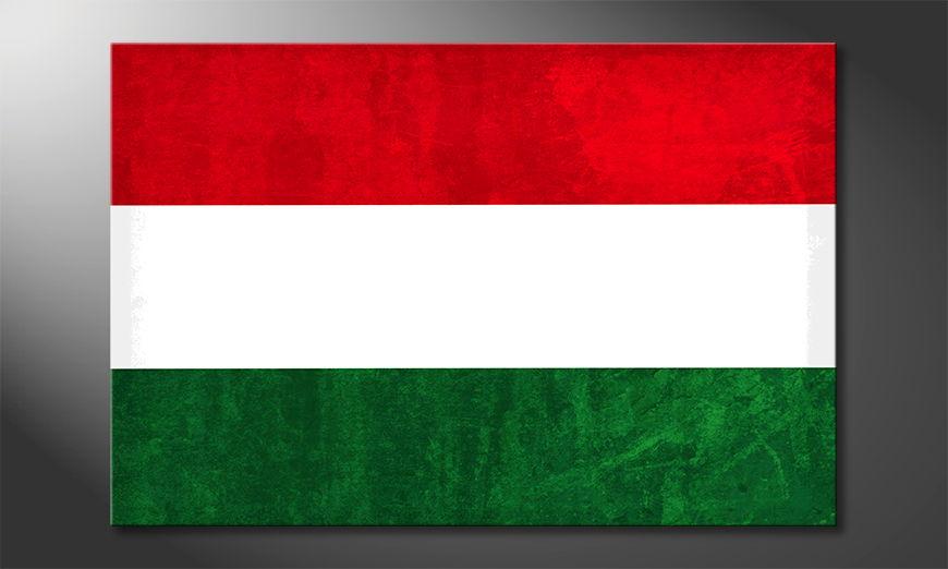 Ungheria quadro moderni