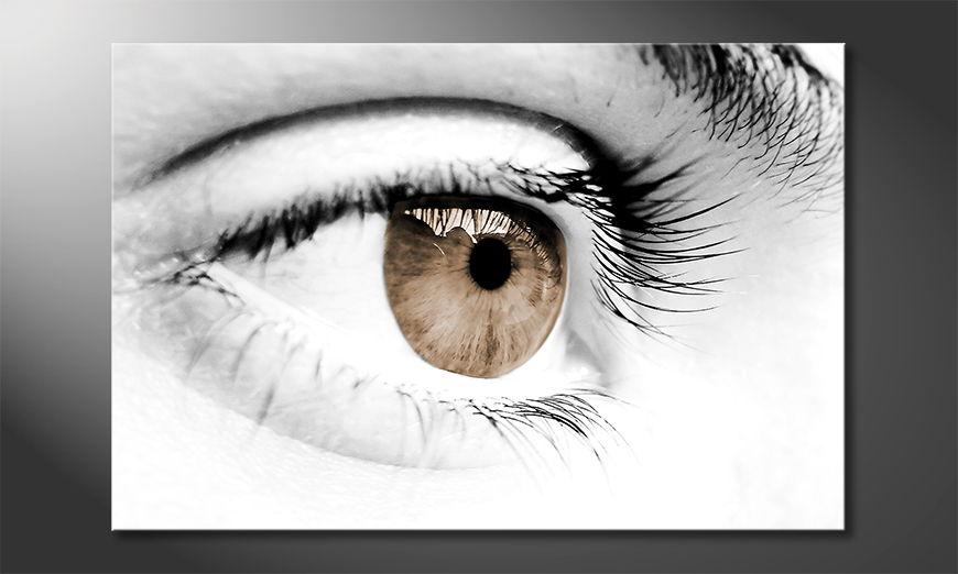 Vision tela