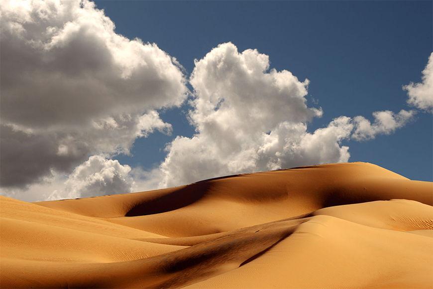 Carta da parati con foto Dune da S a XXL