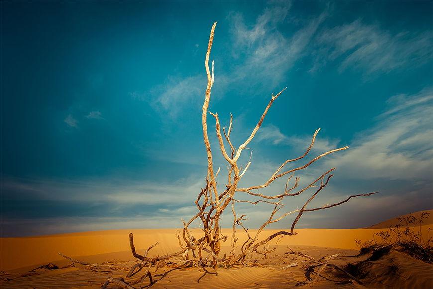 La carta da parati TNT Paesaggio desertico da 120x80cm
